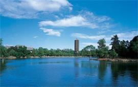 北京大学湖与塔