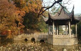 湖南大学美景